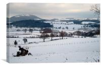 The Severn and the Wrekin Hill, Canvas Print