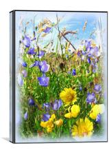 The Meadow, Canvas Print