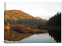 Highland Tranquility, Canvas Print