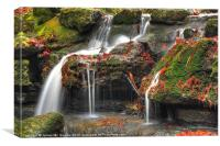 Hollyhill waterfall, Canvas Print