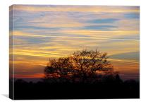 Cloudy Sunset with Plane Trails, Canvas Print