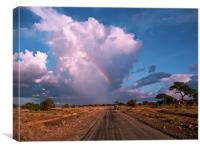 Storm Coming in the Masai Mara, Canvas Print