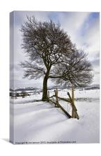 A cold Day On Biddulph Moor, Canvas Print