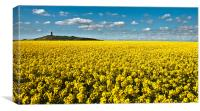 Golden Fields, Canvas Print