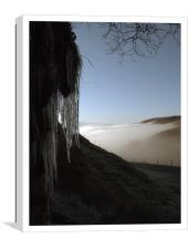 Creeping Cold, Canvas Print