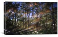 Light & Reflections One 3703_11955, Canvas Print