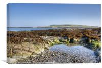 Guns Island, Ballyhornan, County Down, Canvas Print