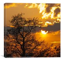 Watching the sun go down, Canvas Print