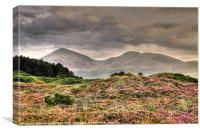 Rain forecast for the Mournes, Canvas Print
