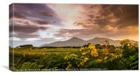 Sunset over the Mournes, Canvas Print
