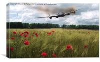 We will remember them, Canvas Print