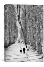 Walking the Lurgan park avenue, Canvas Print