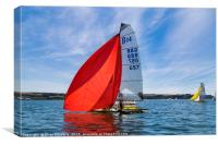 Red Spinnaker, Canvas Print