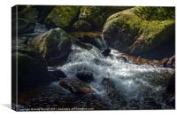 The river Lyn flowing through Lynmouth Gorge, Canvas Print