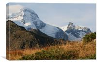view from The Swiss  Alps, Canvas Print