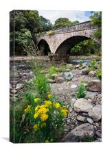 Stream under a bridge, Canvas Print