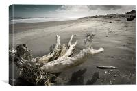 Flotsum on Hokitika Beach, Canvas Print