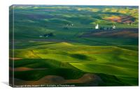First light on the Palouse, Canvas Print