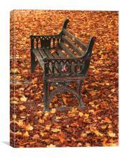 Park bench on a carpet of autumn leaves, Canvas Print