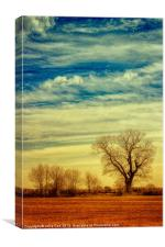 Under the Clouds, Canvas Print