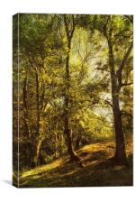 Trees and Meadow, Canvas Print