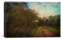 A Walk In The Country, Canvas Print