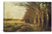Barningham Bridleway, Canvas Print