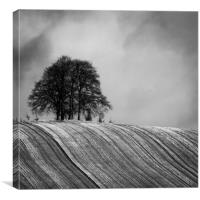 Tree Clump, Canvas Print