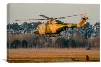 Army Air Corps Lynx at sunset, Canvas Print