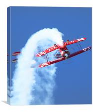 Its The Pitts Specials, Canvas Print