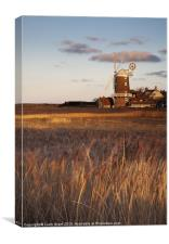 Reed beds at sunset with Cley Mill beyond., Canvas Print