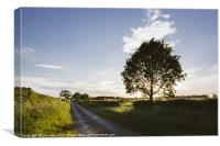 Evening sunlight over a remote country road. East , Canvas Print