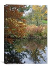 Hyde Hall Autumn, Canvas Print