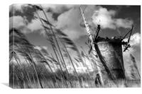 In the Wind, Canvas Print