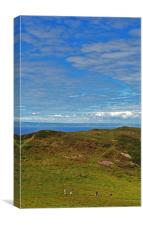 Hiking on the Foreland , Canvas Print