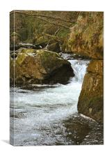 waterfall on the East Lyn River, Canvas Print