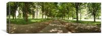 The Avenue, Cassiobury Park, Watford, Canvas Print
