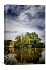 Village Pond, Canvas Print