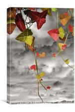 Colour Me Autumn, Canvas Print