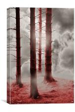 Forest Trees in Red, Canvas Print