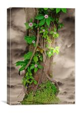 The Spring Tree, Canvas Print