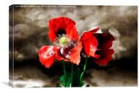 Poppies in a Storm, Canvas Print