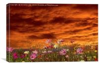 Sunset In Summer, Canvas Print