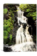 Dunvegan Castle Waterfall, Canvas Print