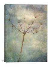 carried on the wind, Canvas Print