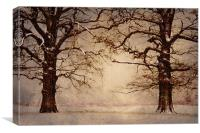 Winter at its coldest, Canvas Print