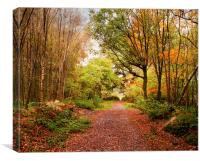 Copper pathway, Canvas Print