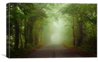 The Green Canopy, Canvas Print