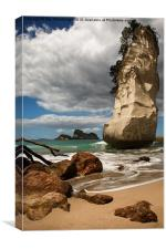 Cathedral Cove Beach, New Zealand, Canvas Print