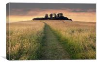 Wittenham Clumps, Canvas Print